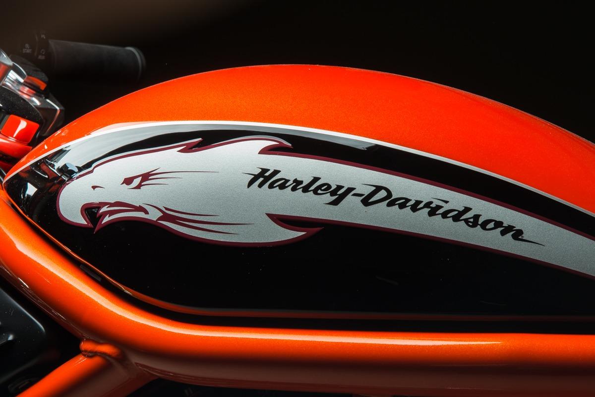 2006 Harley Davidson Vrxse Screamin Eagle Destroyer